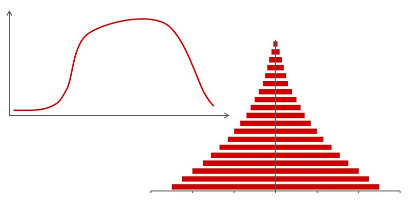 analogy of corporate lifecycles and a population pyramid